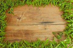 Feld wird von den Blättern gemacht Stockbilder