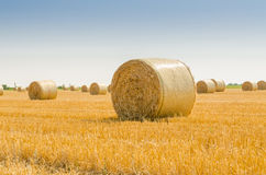 Free Feld With Bale Of Straw Stock Photography - 58427432