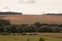 Feld zum Horizont Stockfotografie