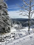 Feldberg Photo stock