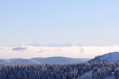 Feldberg, Black Forest - Germany Royalty Free Stock Photos