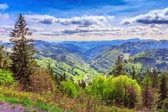 Feldberg Mountain in Spring Royalty Free Stock Photo
