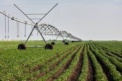 Feldbewässerungssystem lizenzfreie stockfotografie