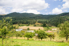 Felder auf den Steigungen der Balkan-Berge in Bulgarien Stockbild