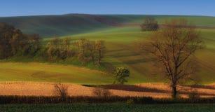 Felder auf Moravian-Hügeln Stockbild