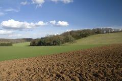 Felder in Cotswold. England Stockfotografie