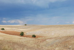 Felder in der Türkei Lizenzfreies Stockfoto