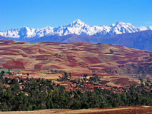 Felder des Altiplano Lizenzfreies Stockbild