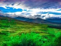Felder des Grüns Stockbilder