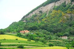 Felder durch sehr schöne Farben auf Hügel Hügeln in der Provinz von Padua in Venetien (Italien) Lizenzfreies Stockfoto