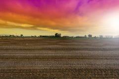 Felder in Italien bei Sonnenuntergang Lizenzfreie Stockfotos
