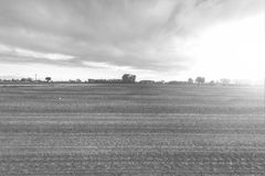 Felder in Italien bei Sonnenuntergang Lizenzfreies Stockbild