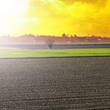 Felder in Italien bei Sonnenuntergang Stockfotos