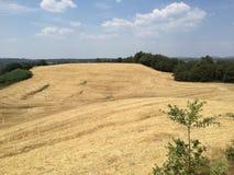 Felder nahe Siena, Toskana, Italien Lizenzfreie Stockbilder
