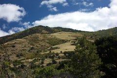 Felder Sangre De Cristo Mountains Stockfoto