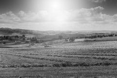 Felder in Sizilien nachdem dem Ernten Lizenzfreies Stockfoto