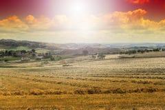 Felder in Sizilien nachdem dem Ernten Stockbild