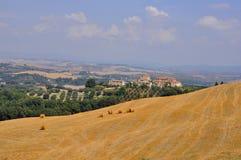 Felder in Toskana, Italien   lizenzfreie stockbilder