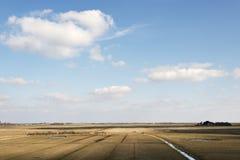 Felder und Abzugsgräben in Nord-Deutschland Stockfotografie