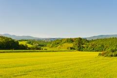 Felder und Berge Stockbild
