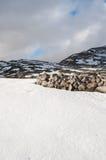 Felder und Berge bedeckt durch den Schnee im Winter Stockfotos
