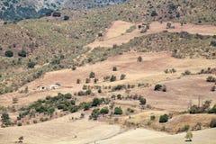 Felder und Hügel in Andalusien Stockfoto