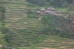 Felder und Holzhäuser in Nepal Stockfotos