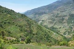 Felder und Holzhäuser in Nepal Lizenzfreies Stockbild