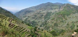 Felder und Holzhäuser in Nepal Stockbilder