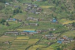 Felder und kleine Holzhäuser in Nepal Lizenzfreie Stockfotos