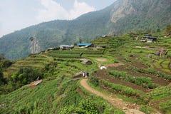 Felder und kleine Holzhäuser in Nepal Lizenzfreies Stockfoto