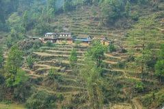 Felder und kleine Holzhäuser in Nepal Lizenzfreie Stockbilder