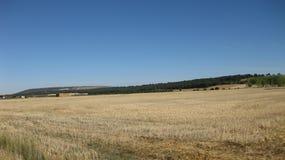 Felder und Landschaften stockbilder