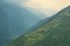 Felder und nebelige Berge in Nepal Lizenzfreie Stockfotos