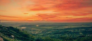 Felder und Sonnenuntergang Lizenzfreies Stockfoto