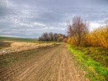 Felder und Sumpf Lizenzfreie Stockbilder