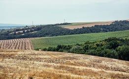 Felder und Wälder, bebautes Land Stockbild