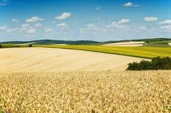Felder und Wiesen Stockfoto