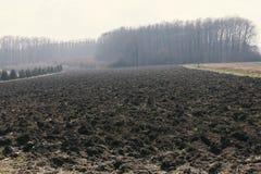 Felder und Wiesen Stockbild