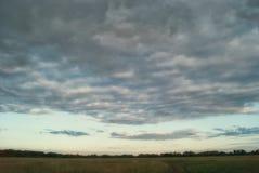 Felder und Wiesen der Saratow-Region unter dem blauen bewölkten Himmel Stockfotos