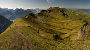 Felder und Wiesen in der Schweizer Alpe Lizenzfreies Stockbild