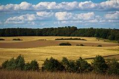 Felder und Wiesen von Scania, Schweden Lizenzfreies Stockbild