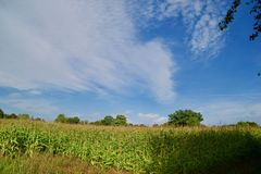 Felder und Wolken lizenzfreie stockfotos
