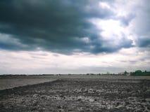 Felder und Wolken Stockfoto