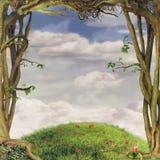 Felder von Bäumen Stockbilder