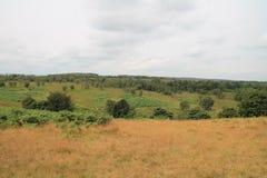 Felder von Derbyshire-Tälern Stockfotos