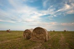 Felder von hayroll Lizenzfreies Stockfoto
