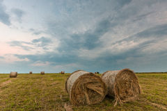 Felder von hayroll Lizenzfreie Stockfotos