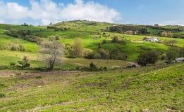 Felder von Santillana Del Mar stockfotografie