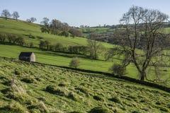 Felder, Wiesen und Bäume, Höchstbezirk, England, Großbritannien stockbild